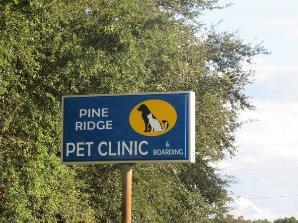 The front sign for Pine Ridge Pet Clinic