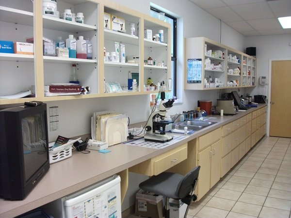 The in clinic lab